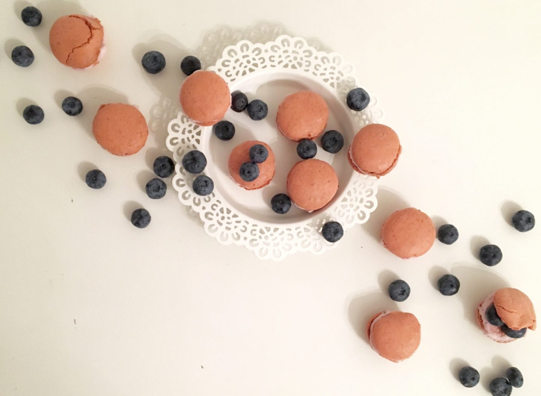 September Obst – Die Blaubeere