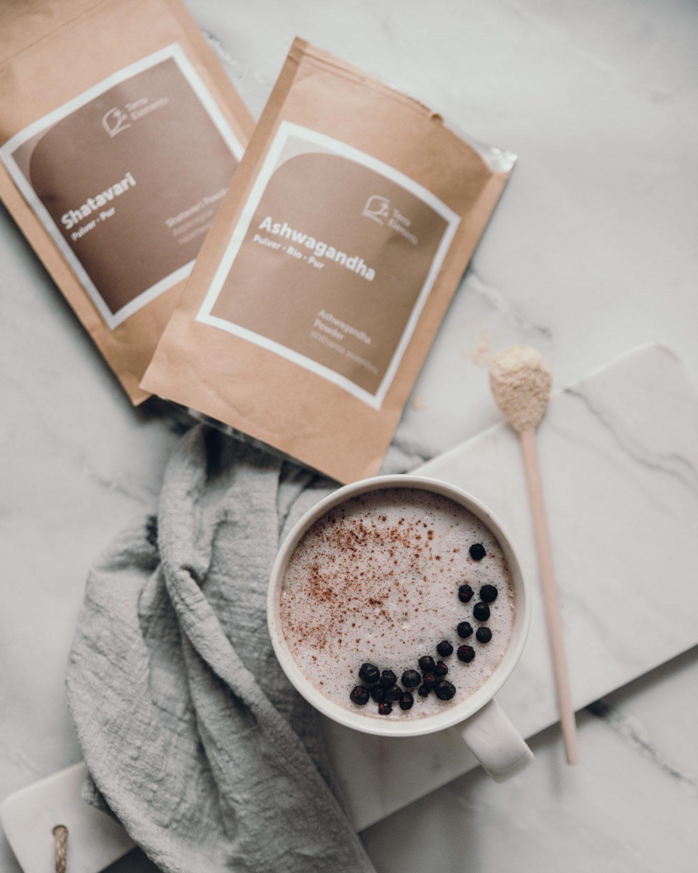Ayuvedische Küche – Blaubeer Moon Milk